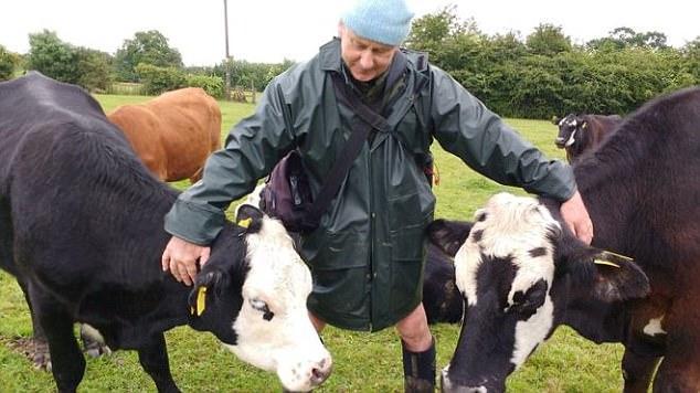 Фермер-вегетарианец отправил коров на отдых
