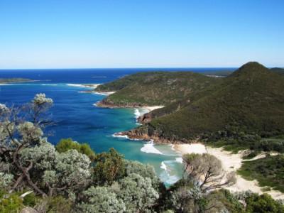 Безликая рыба найдена у берегов Австралии