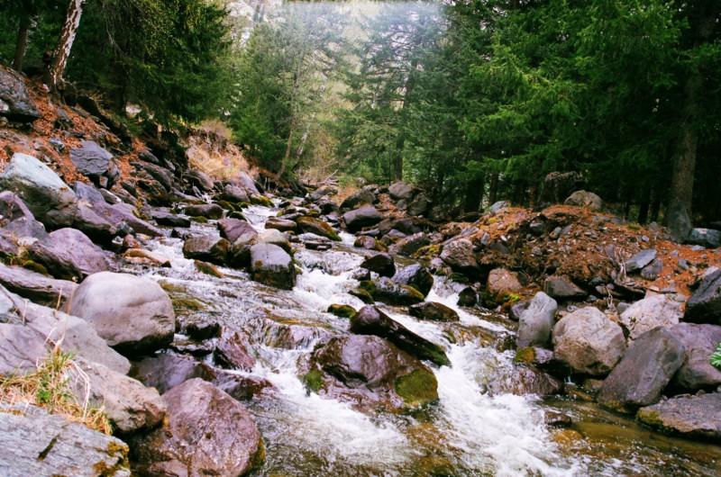 Алтай снова лидирует в экологическом рейтинге