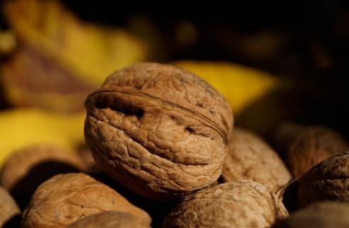 Пять преимуществ масла грецкого ореха для здоровья