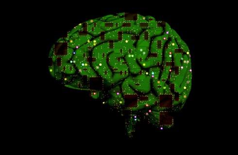 Мозг может контролировать старение