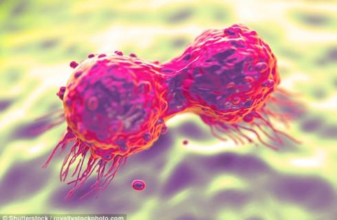 Наметилось прорывное лечение рака груди