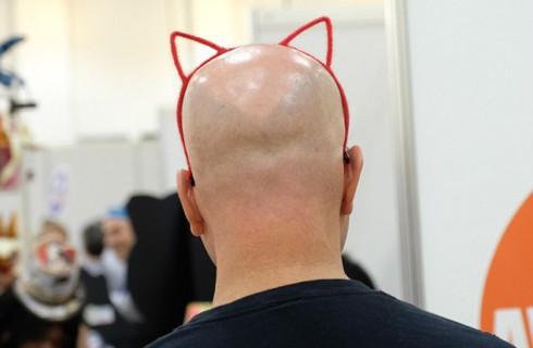 CatCon: можно держать кошку и оставаться крутым