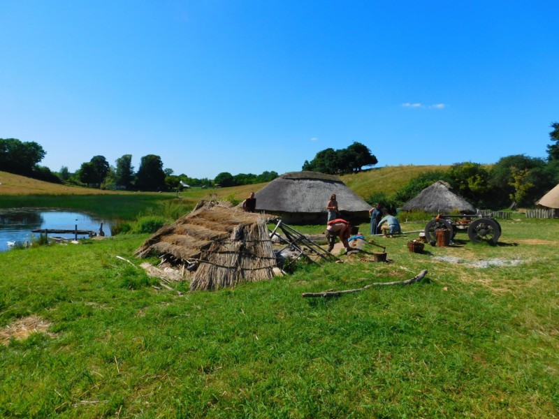 Женщины викинги отвечали за военную стратегию