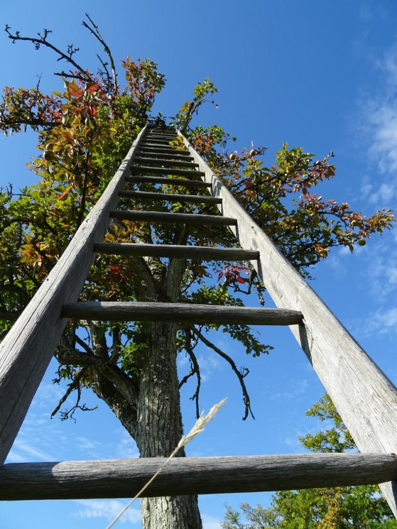 Как добиться продвижения по карьерной лестнице