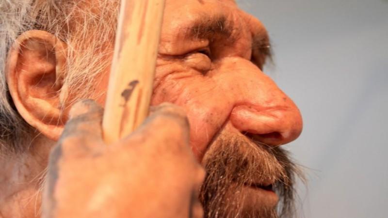 Привычки и цвет волос подарили неандертальцы