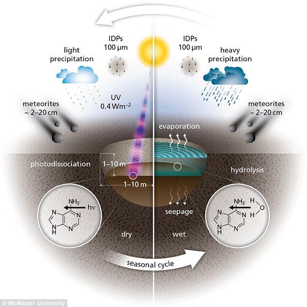 Ученые: Жизнь наЗемле могла появиться из-за метеоритной бомбардировки