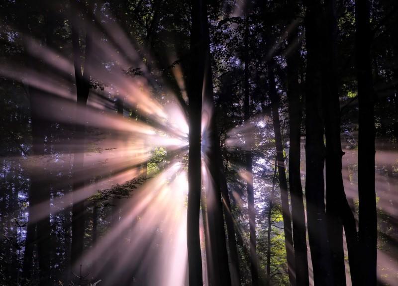 Топ-10 лучших фактов о свете, которые вы не знали
