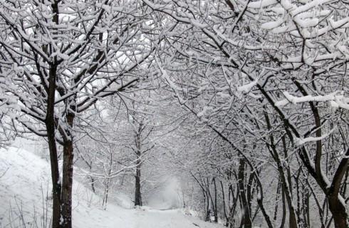 Топ-5 советов по организации зимнего путешествия