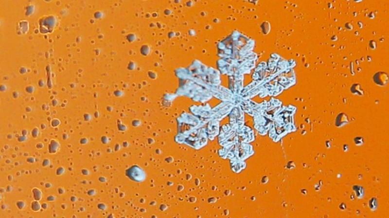 Ученые выращивают гигантские снежинки