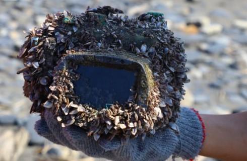 Фотокамера 2 года плавала в океане