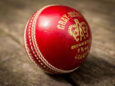 Мяч для крикета