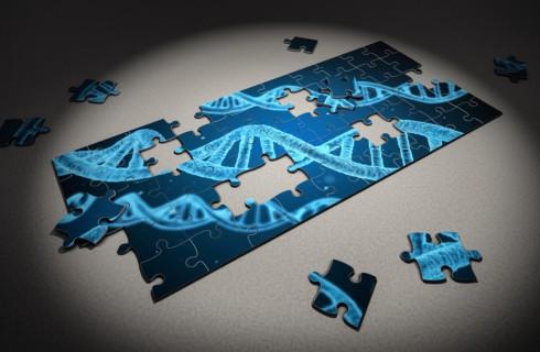 Появился инструмент предсказания цвета глаз и волос по ДНК
