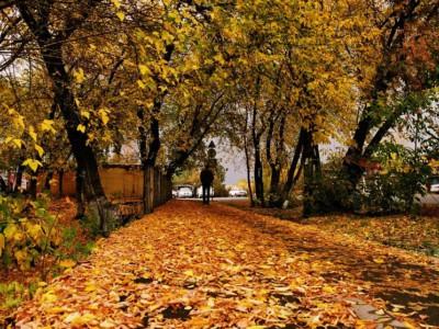 Сентябрь в Сибири. Фотограф Екатерина Пастухова