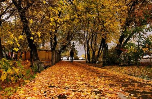 Топ-10 вещей, которые жизненно необходимо знать о сентябре