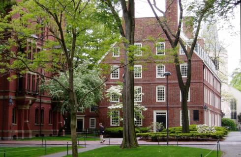 Секрет успеха раскрыли специалисты Гарвардского университета