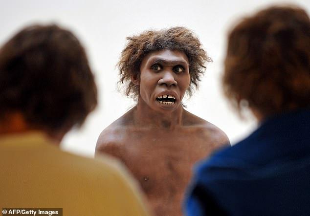 Неандертальцам помогли выжить акушерки и сострадание