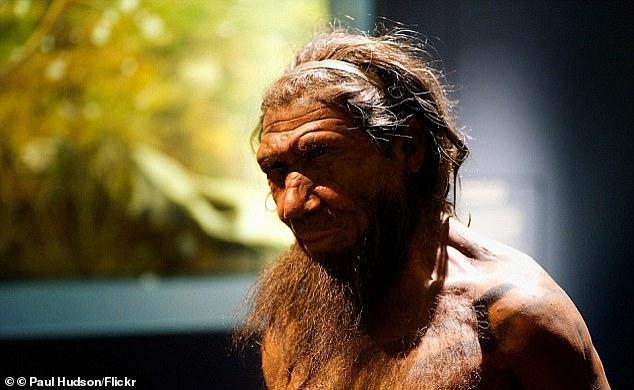 Скрещивание сильно повлияло на неандертальцев