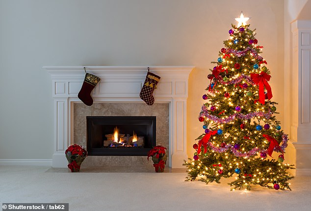 Пять секретов, чтобы нарядить идеальную новогоднюю елку