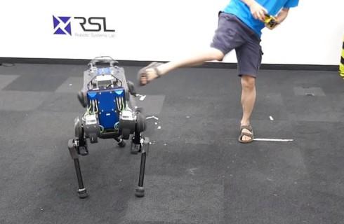 Робо-собака стала еще умнее, благодаря искусственному интеллекту