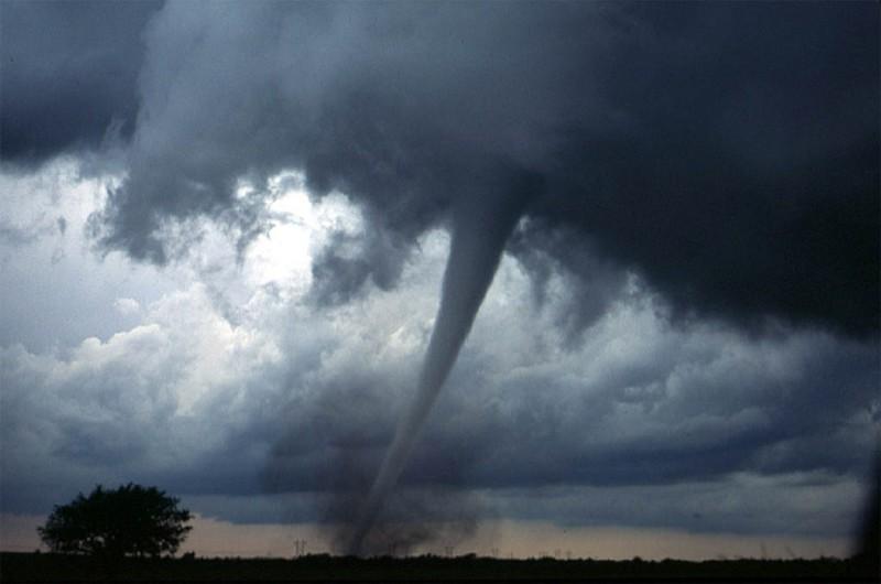 От торнадо до дома с привидениями, илиТоп-10 фактов, которые могут спасти вашу жизнь