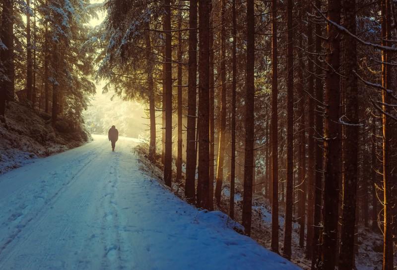 Как улучшить настроение, выйдя на улицу на 5 минут
